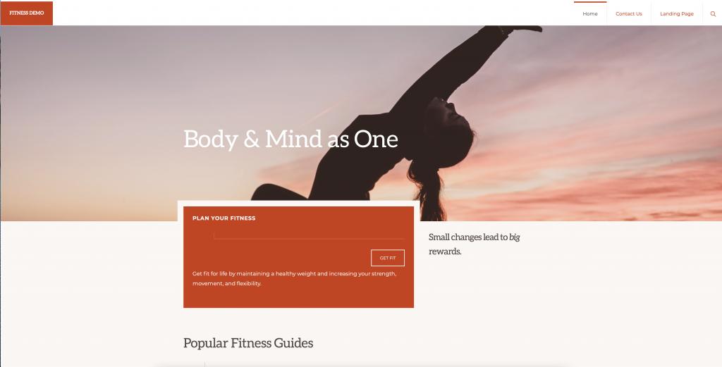fitness-demo website